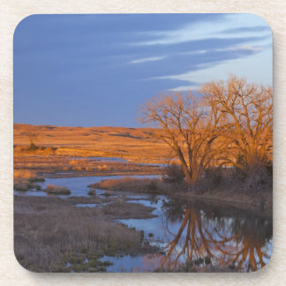 Bathed in sunset light the Calamus River Drink Coaster