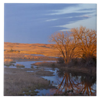 Bathed in sunset light the Calamus River Large Square Tile
