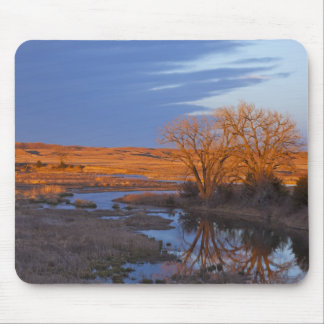 Bathed in sunset light the Calamus River Mouse Pad