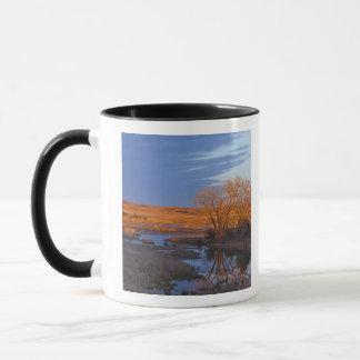 Bathed in sunset light the Calamus River Mug