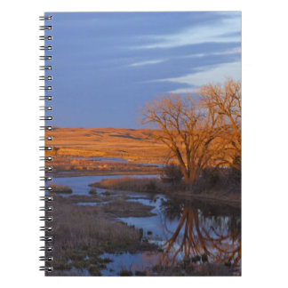 Bathed in sunset light the Calamus River Notebook