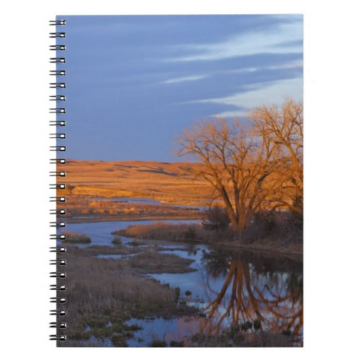 Bathed in sunset light the Calamus River Note Book