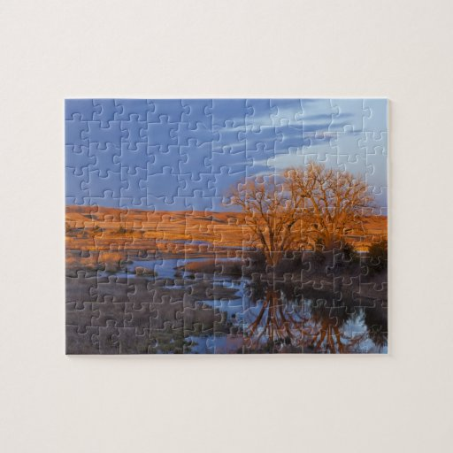 Bathed in sunset light the Calamus River Puzzles