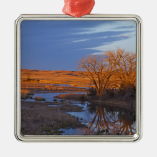 Bathed in sunset light the Calamus River Silver-Colored Square Decoration