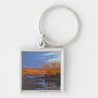 Bathed in sunset light the Calamus River Silver-Colored Square Key Ring
