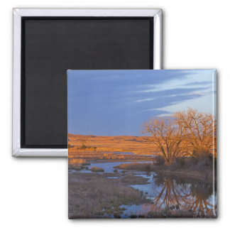 Bathed in sunset light the Calamus River Square Magnet