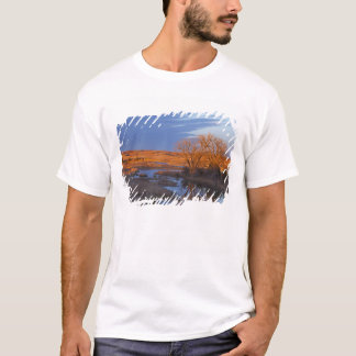 Bathed in sunset light the Calamus River T-Shirt