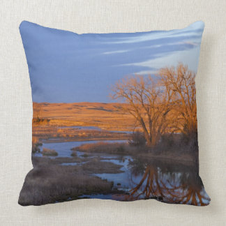 Bathed in sunset light the Calamus River Throw Cushions