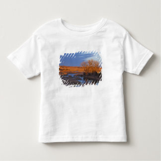 Bathed in sunset light the Calamus River Toddler T-Shirt