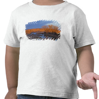 Bathed in sunset light the Calamus River Tee Shirts