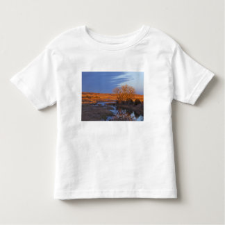 Bathed in sunset light the Calamus River Tshirt