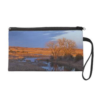 Bathed in sunset light the Calamus River Wristlet Purses