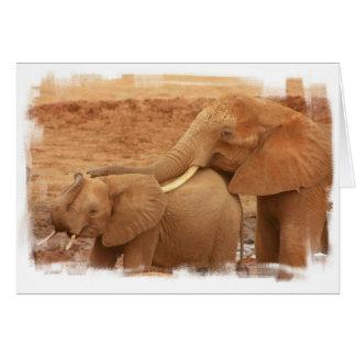 Bathing Baby Elephant Greeting Card