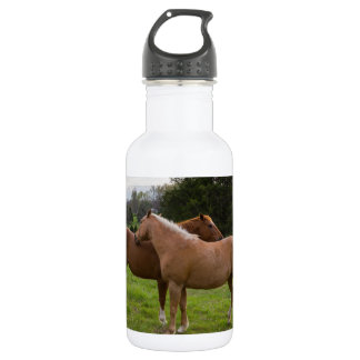 Bathing Beauties 532 Ml Water Bottle