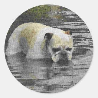 Bathing Bulldog Round Stickers