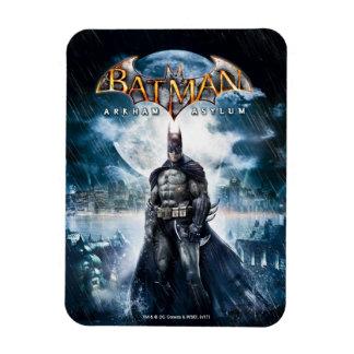 Batman: Arkham Asylum | Game Cover Art Magnet