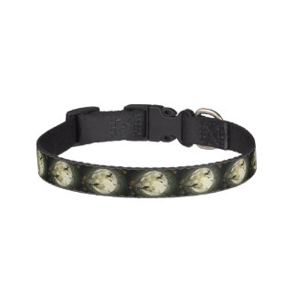 Bats fly Crow sits in Front of Halloween Full Moon Pet Collar