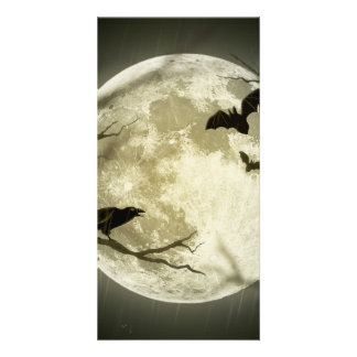 Bats fly Crow sits in Front of Halloween Full Moon Photo Greeting Card