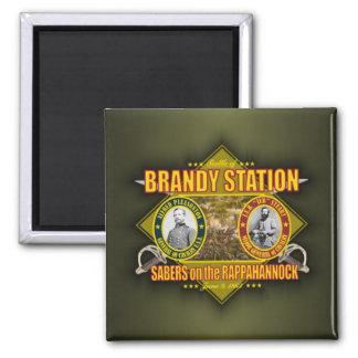 Battle of Brandy Station Magnet