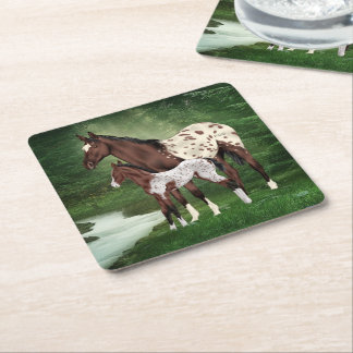 Bay and White Appaloosa Mare and Foal Print Square Paper Coaster