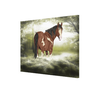 Bay and White Splash Overo Paint Horse Canvas Print