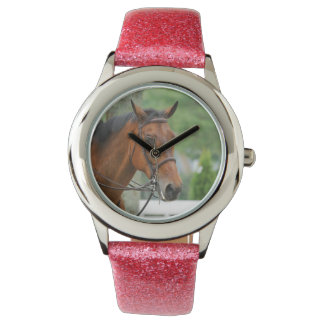Bay Arab Horse Watch