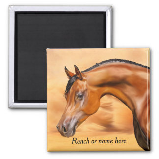 Bay Arabian Horse Personalized Magnet