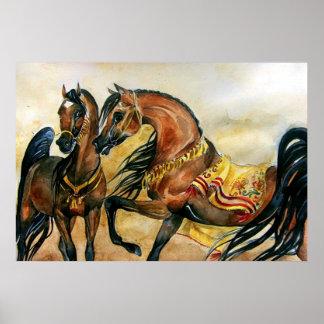 Bay Arabian Horse Portrait Poster Print
