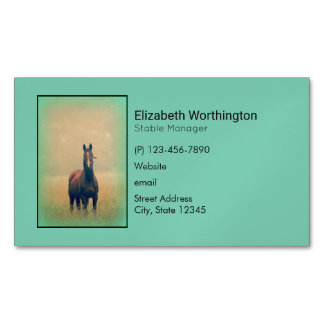 Bay Horse Standing in a Field Magnetic Business Card