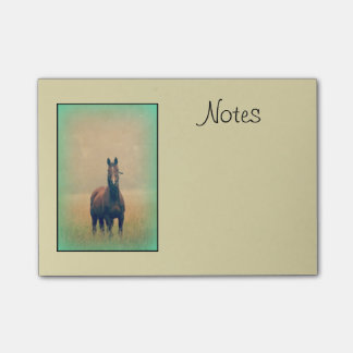 Bay Horse Standing in a Field Post-it Notes