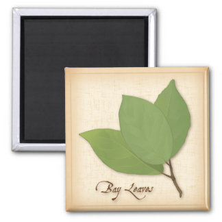 Bay Leaves Magnet