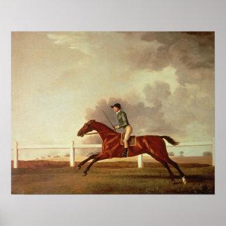 Bay Malton with John Singleton Up, c.1767 Poster