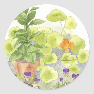 Bay Nasturium Flower Watercolor Herb Art Classic Round Sticker
