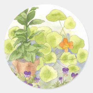 Bay Nasturium Flower Watercolor Herb Art Round Sticker