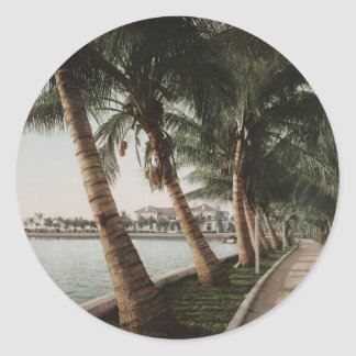 Bay Palm Trees Round Stickers