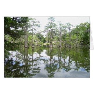 Bayou Reflection Card