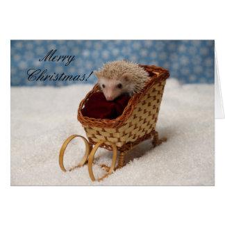 BB238777, MerryChristmas! Card