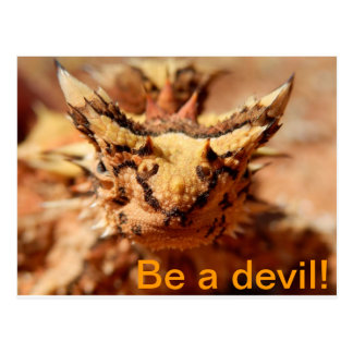 Be a devil! Thorny devil postcard. Postcard