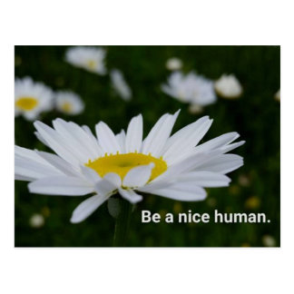Be a Nice Human Postcard