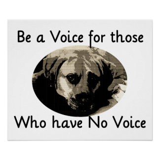 Be a Voice Posters