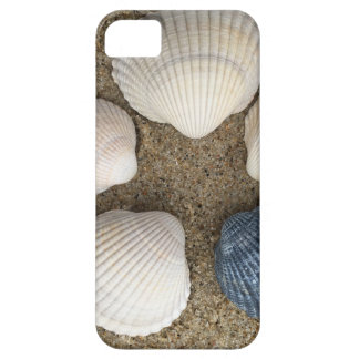 Be different barely there iPhone 5 case