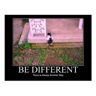 Be Different  Kitten Postcard