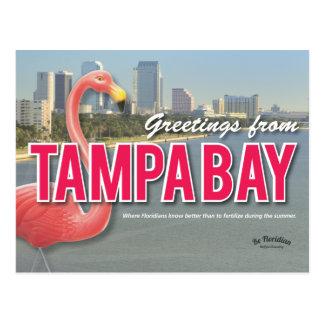 Be Floridian - Tampa Bay Postcard