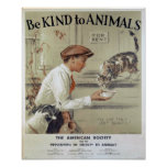 Be Kind to Animals-Cats Poster
