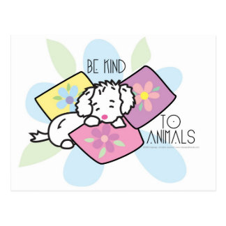 be-kind-to-animals- Rocky Postcard
