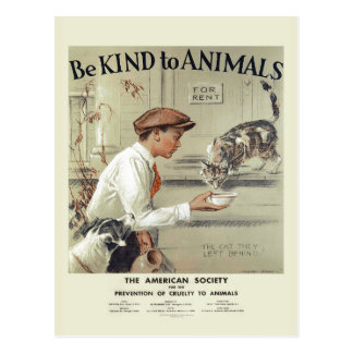 Be Kind to Animals USA vintage postcard #2
