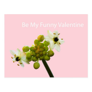 Be My Funny Valentine Postcard