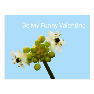 Be My Funny Valentine Postcard
