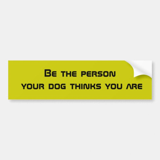 Be the person your dog thinks you are bumper stickers
