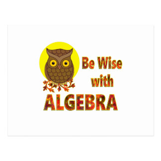 Be Wise With Algebra Postcard